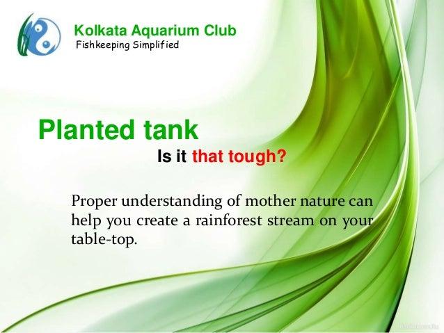 Kolkata Aquarium Club  Fishkeeping SimplifiedPlanted tank                   Is it that tough?  Proper understanding of mot...