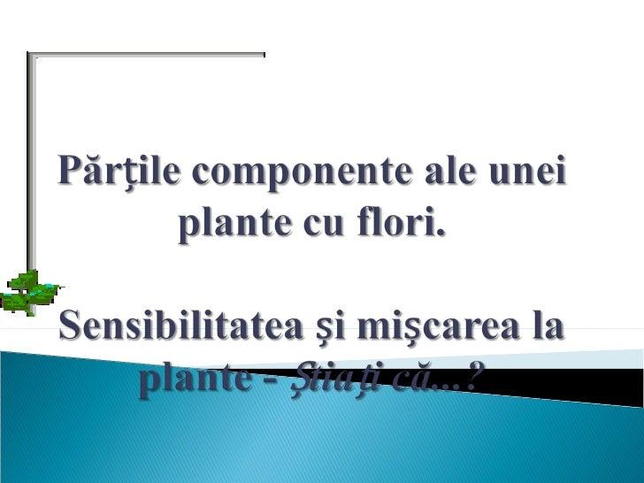 Plantele