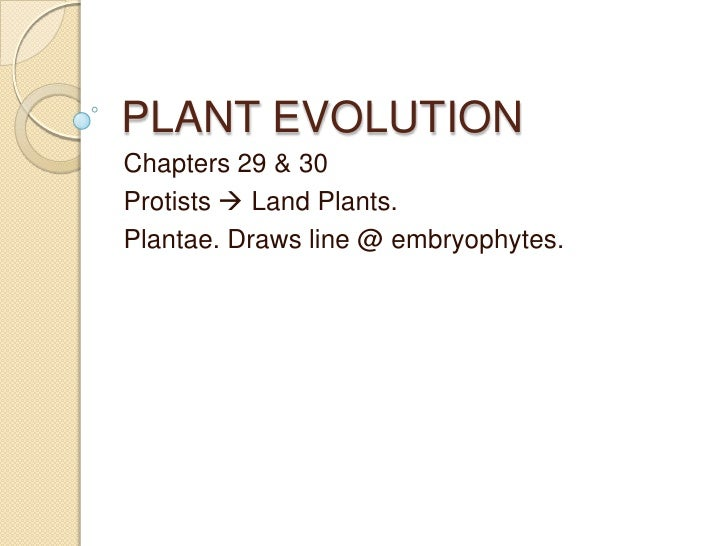 PLANT EVOLUTION Chapters 29 & 30 Protists  Land Plants. Plantae. Draws line @ embryophytes.
