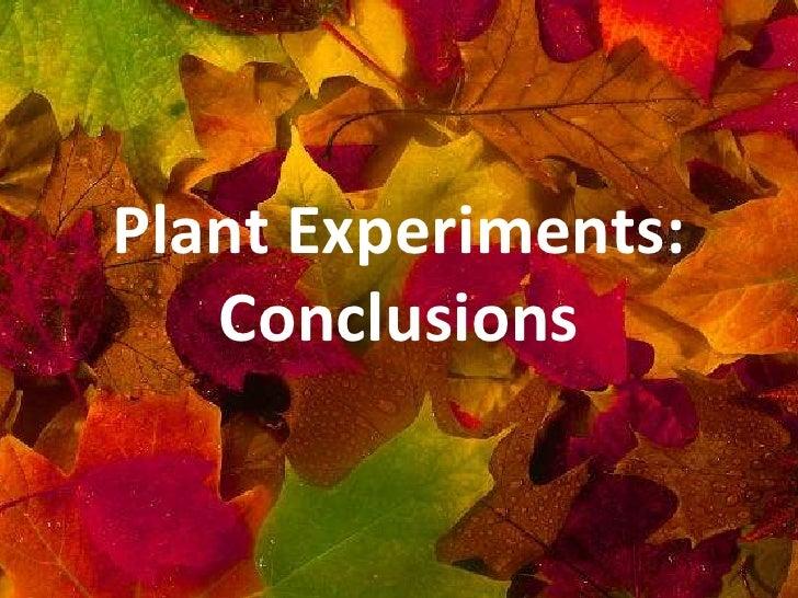 Plant experiments   conclusions