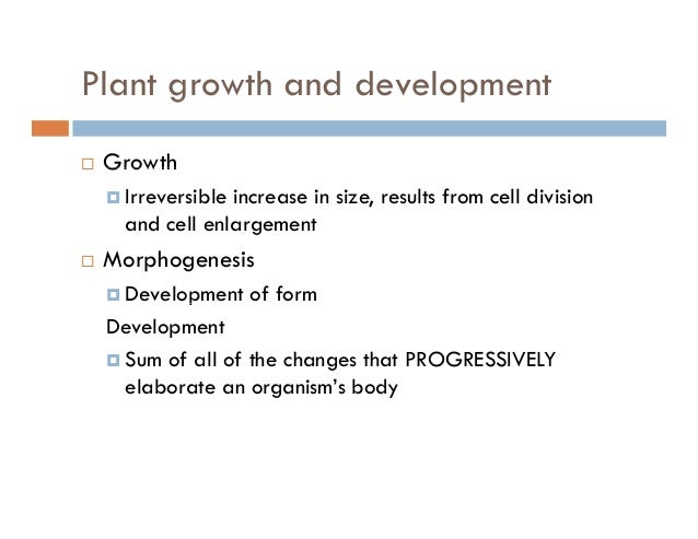 Plant growth and developmentg p GrowthGrowth Irreversible increase in size, results from cell division and cell enlargemen...