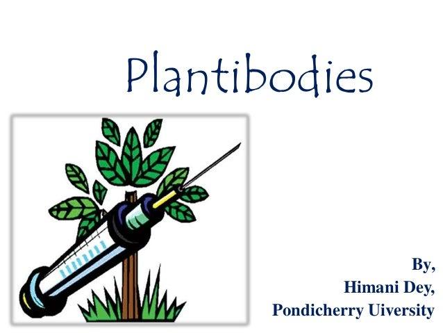 Plantibodies  By, Himani Dey, Pondicherry Uiversity