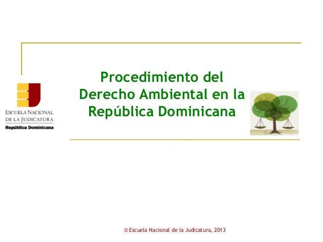 Módulo V     Procedimiento del  Derecho Ambiental en la   República Dominicana           © Escuela Nacional de la Judicatu...