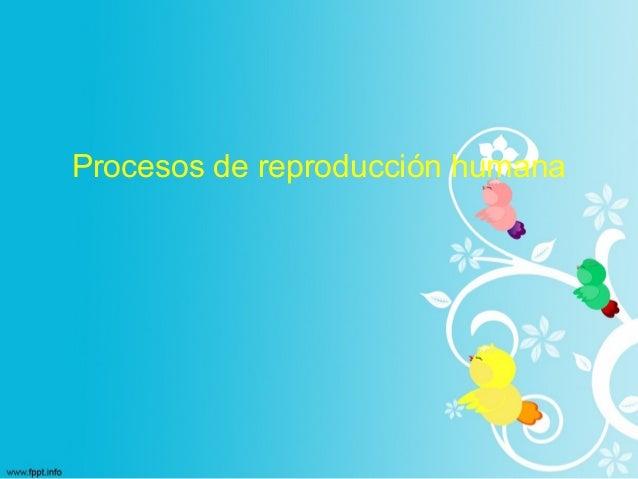 Procesos de reproducción humana