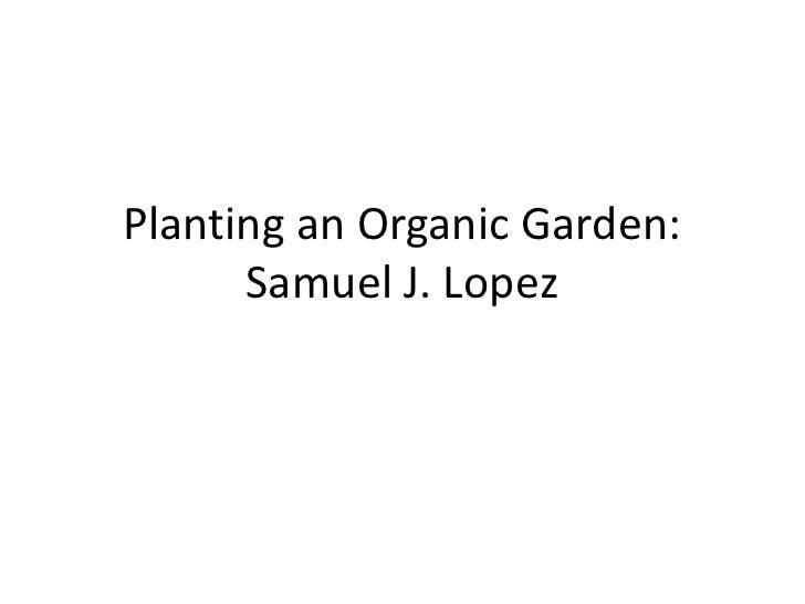 Planting an Organic Garden: Samuel J. Lopez<br />