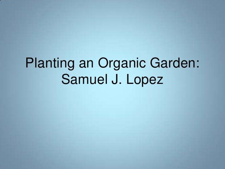 Planting an Organic Garden:       Samuel J. Lopez