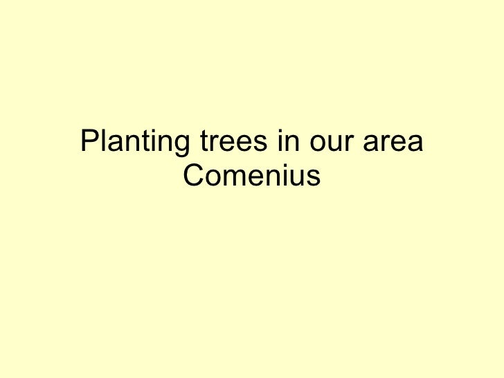 Planting trees in our area