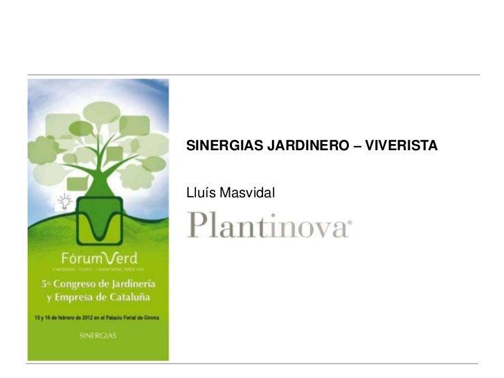 SINERGIAS JARDINERO – VIVERISTALluís Masvidal