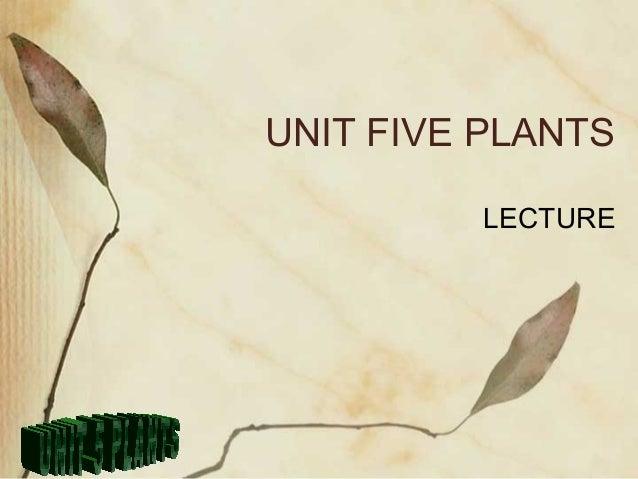 UNIT FIVE PLANTS         LECTURE