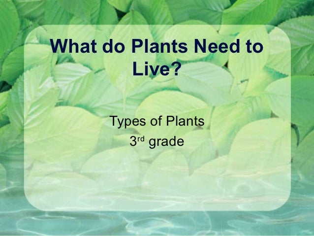 What do Plants Need to        Live?      Types of Plants         3rd grade