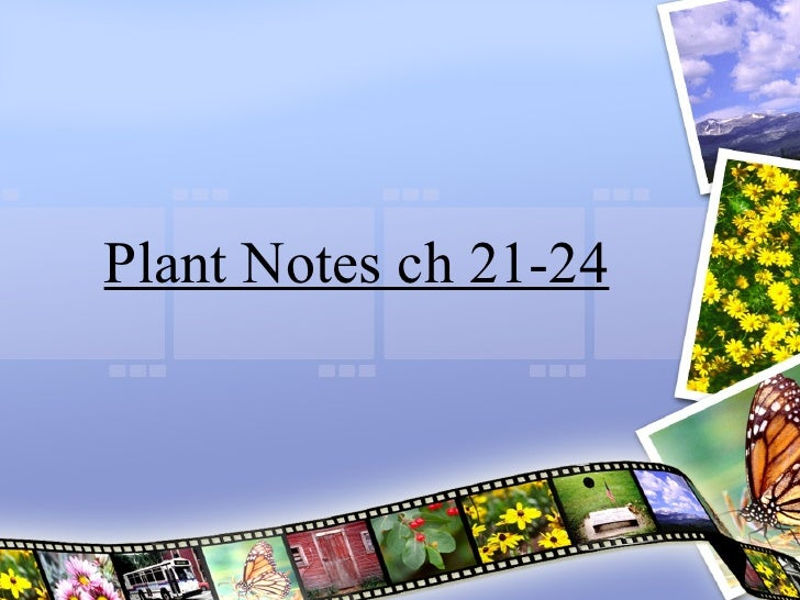 Plant Notes Ch 21 24