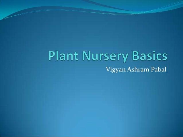 Plant nursery basics