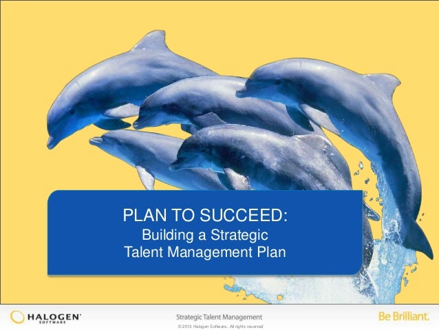 Plan to Succeed: Building a strategic talent management plan