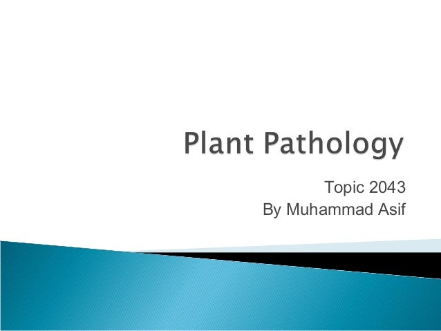 Topic 2043 By Muhammad Asif