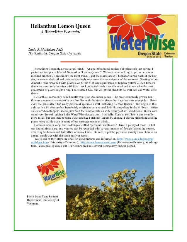 Helianthus Lemon Queen           A WaterWise Perennial Linda R. McMahan, PhD. Horticulturist, Oregon State University     ...