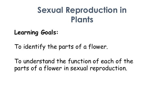 Sexual Reproduction in Plants Learning Goals:  To identify the parts of a flower. To understand the function of each of th...