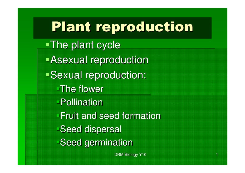Plant reproductionThe plant cycleAsexual reproductionSexual reproduction:  The flower  Pollination  Fruit and seed formati...