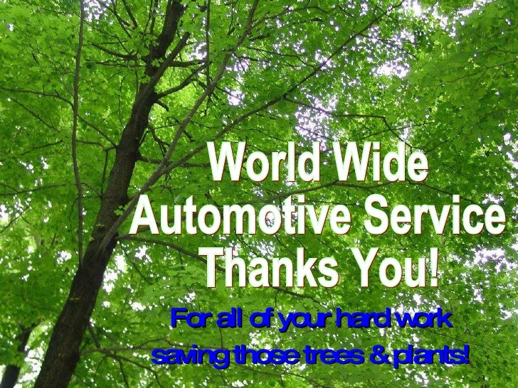 World Wide  Automotive Service  Thanks You!  For all of your hard work  saving those trees & plants!