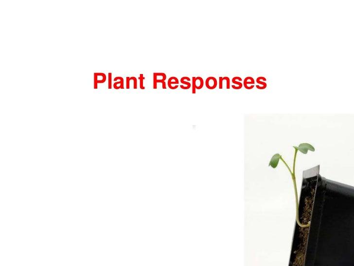 Plant Responses