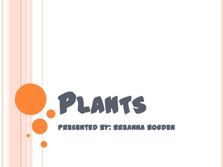 Plants<br />Presented By: BreAnnaBogden<br />