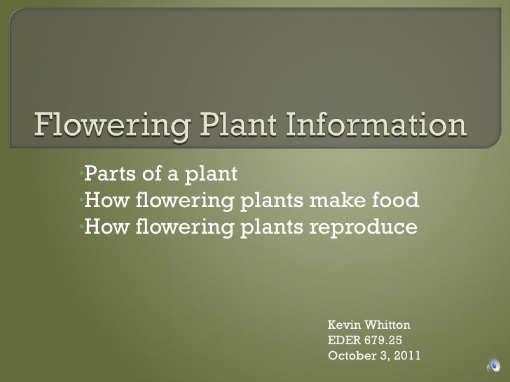 <ul><li>Parts of a plant </li></ul><ul><li>How flowering plants make food </li></ul><ul><li>How flowering plants reproduce...