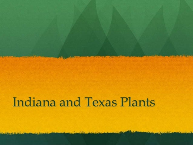 Indiana and Texas Plants
