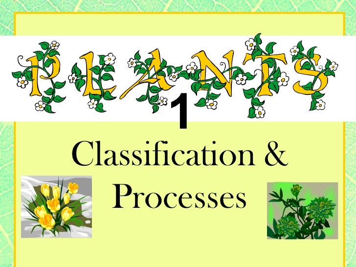 NEW STANDARDS 6th grade Plants1: classification & processes