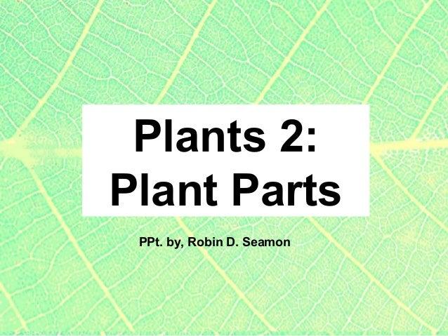 Plants 2: Plant Parts PPt. by, Robin D. Seamon