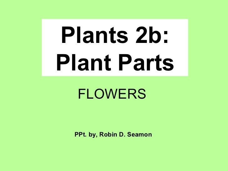 Plants 2b: Plant Parts PPt. by, Robin D. Seamon FLOWERS