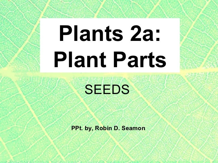 Plants 2a: Plant Parts PPt. by, Robin D. Seamon SEEDS
