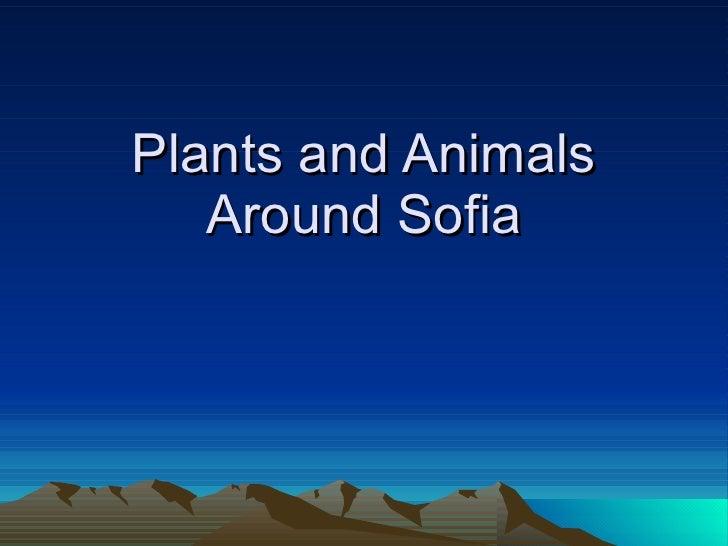 Plants and Animals Around Sofia