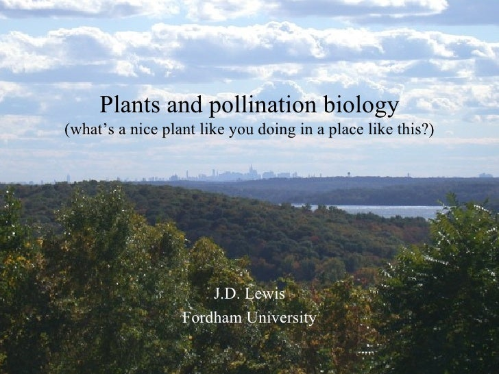 J.D. Lewis Fordham University Plants and pollination biology (what's a nice plant like you doing in a place like this?)