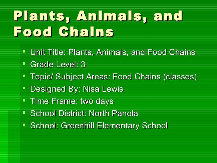 Plants, animals, and food chains