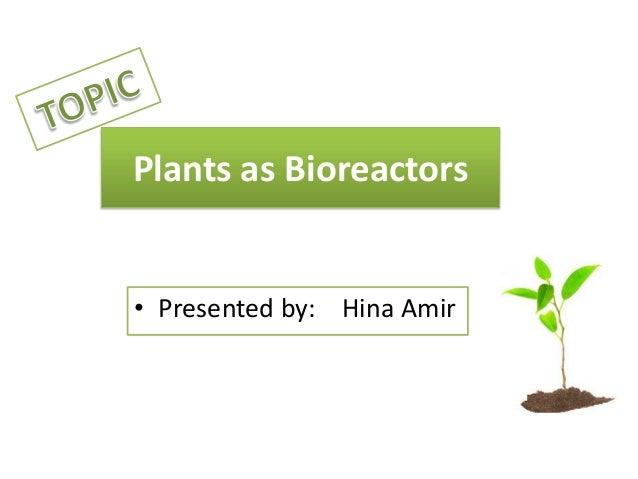 Plants as Bioreactors • Presented by: Hina Amir