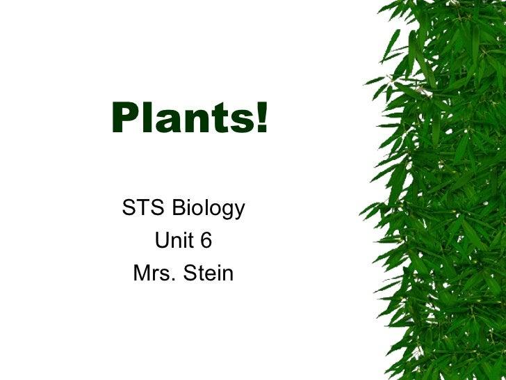 Plants for moodle