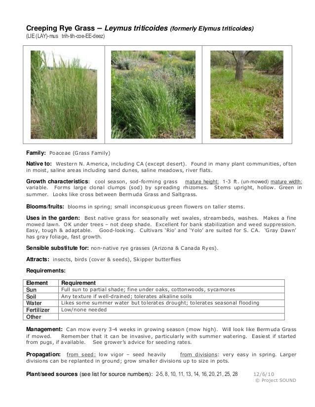 Plant sheets   jan2013