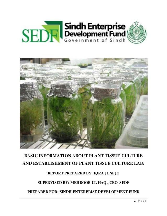 Plant tissue culture lab,sedf