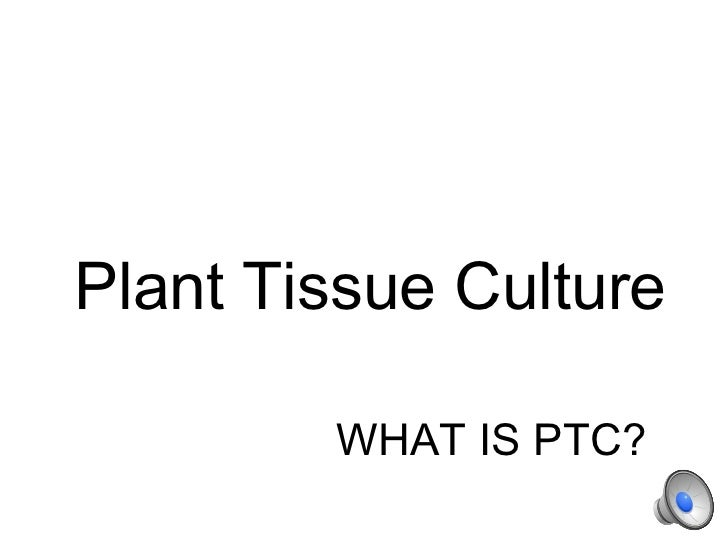 Plant Tissue Culture        WHAT IS PTC?