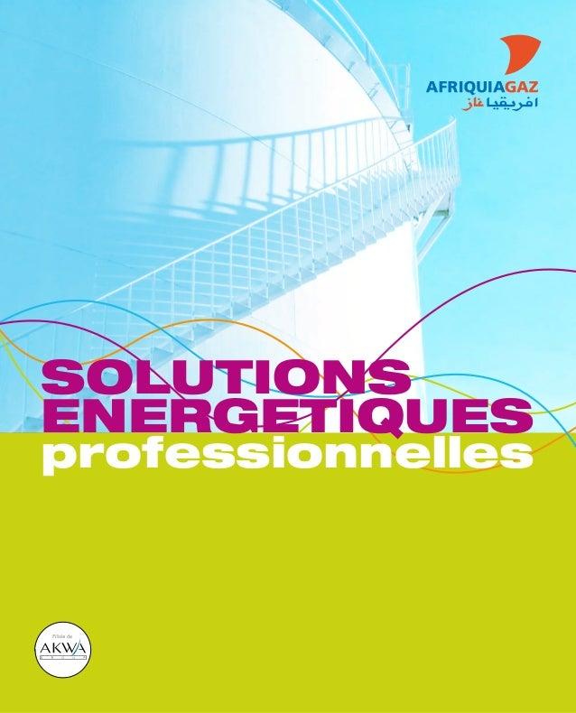 SOLUTIONS ENERGETIQUES professionnelles
