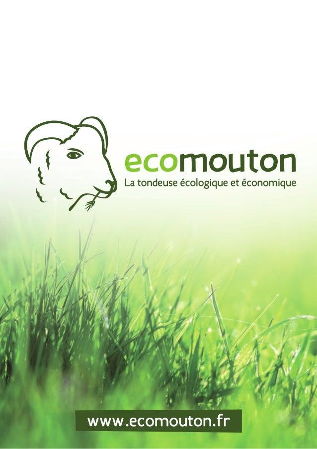www.ecomouton.fr