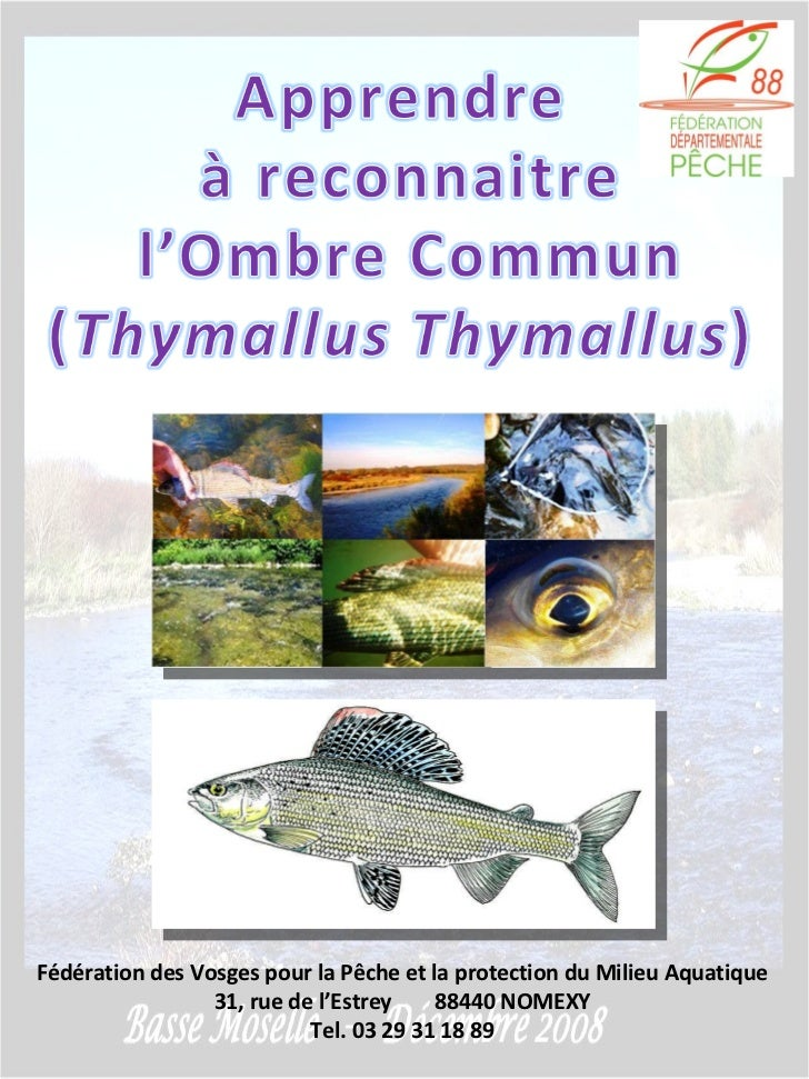 Fédération des Vosges pour la Pêche et la protection du Milieu Aquatique 31, rue de l'Estrey  88440 NOMEXY Tel. 03 29 31 1...