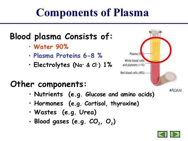 blood and its components pdf