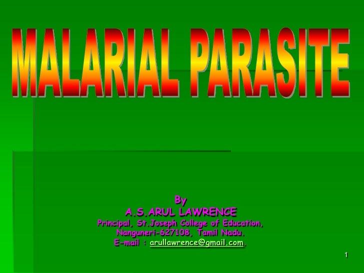 Plasmodium   malarial parasite