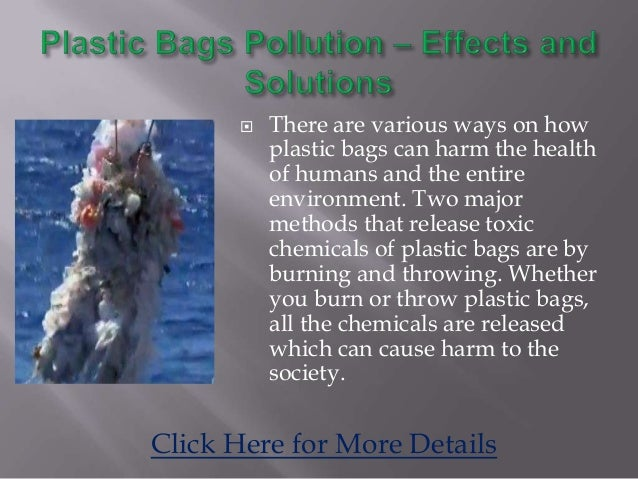 essay on plastic bags health hazards (argumentative essay) plastic bag ban: boon or bane somewhere between 500 billion and a trillion plastic bags are consumed worldwide each year.