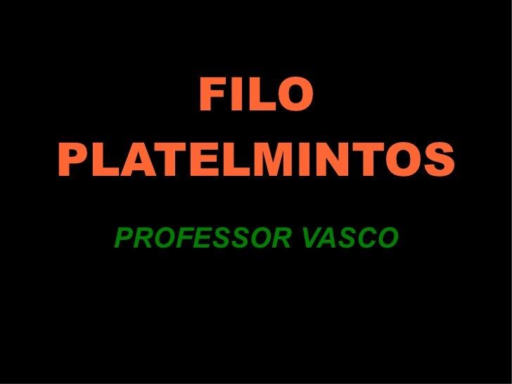 FILO PLATELMINTOS PROFESSOR VASCO