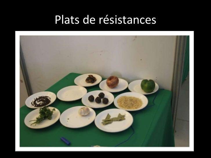 Plats de résistances