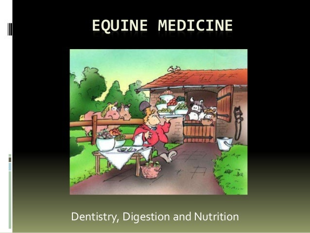 EQUINE MEDICINE Dentistry, Digestion and Nutrition