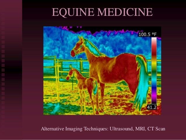 EQUINE MEDICINE Alternative Imaging Techniques: Ultrasound, MRI, CT Scan