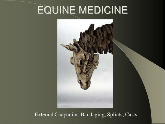 EQUINE MEDICINE External Coaptation-Bandaging, Splints, Casts