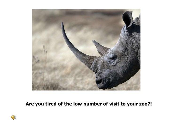 Play card traning to rhinos